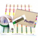 Paulino-System